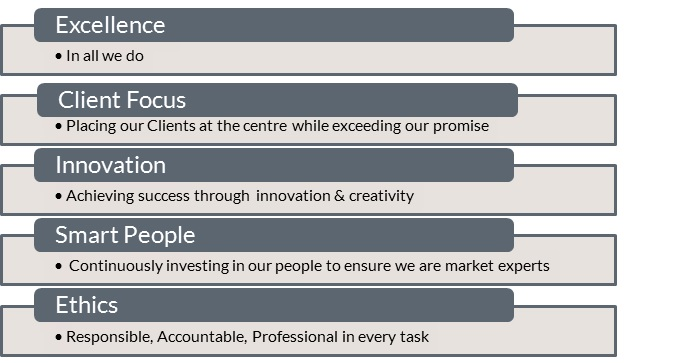 DMP-LLP company values