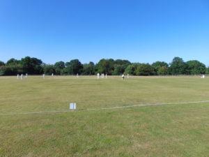 DMP-LLP Cricket