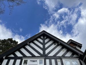 DMP-LLP_Residential Building Survey_Pembury